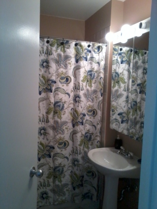 Shower Curtain to the Rescue